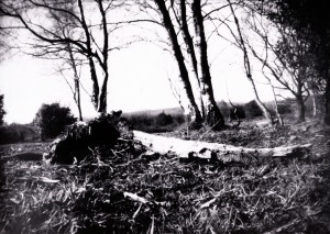 Photo taken with pinhole
